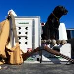 Pickup Dog Kennel
